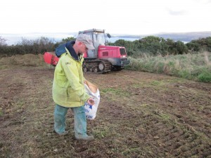 Preparing the ground and sowing seed